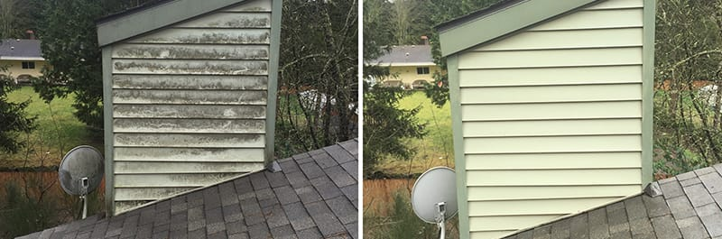 Siding & Gutters Cleaning